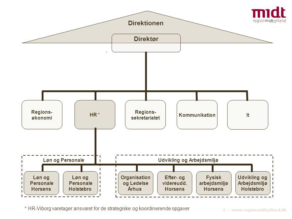 Direktionen Direktør. * HR-Viborg varetager ansvaret for de strategiske og koordinerende opgaver.