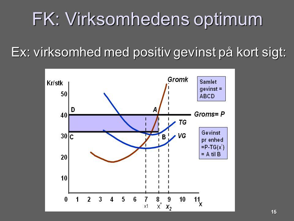FK: Virksomhedens optimum