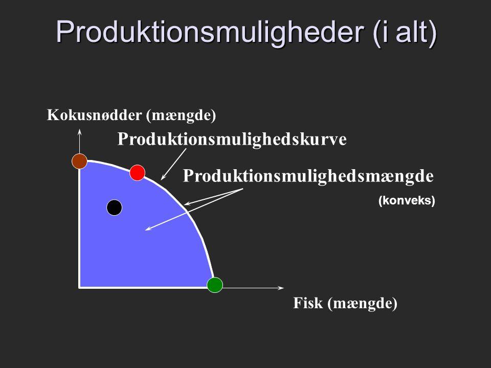 Produktionsmuligheder (i alt)