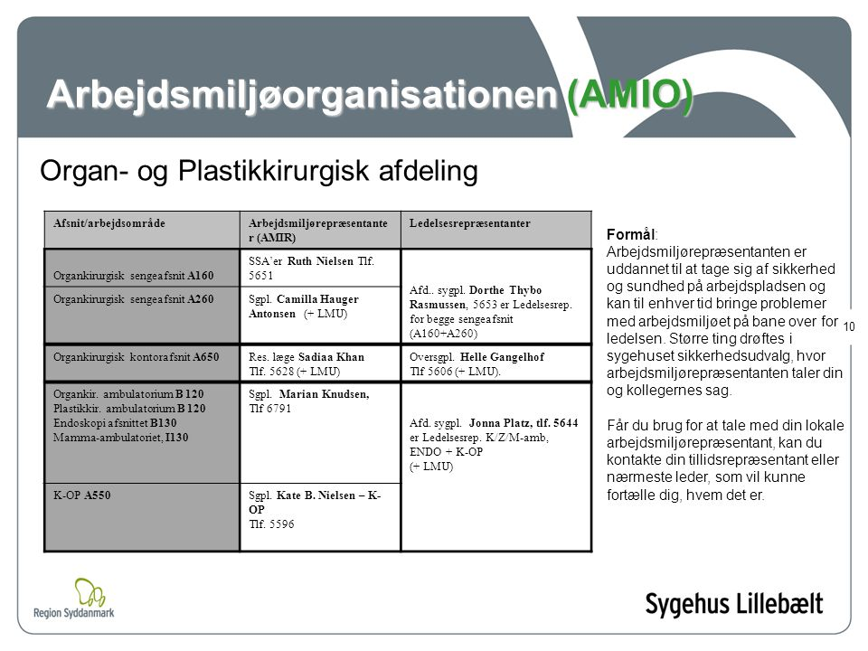 Arbejdsmiljøorganisationen (AMIO)