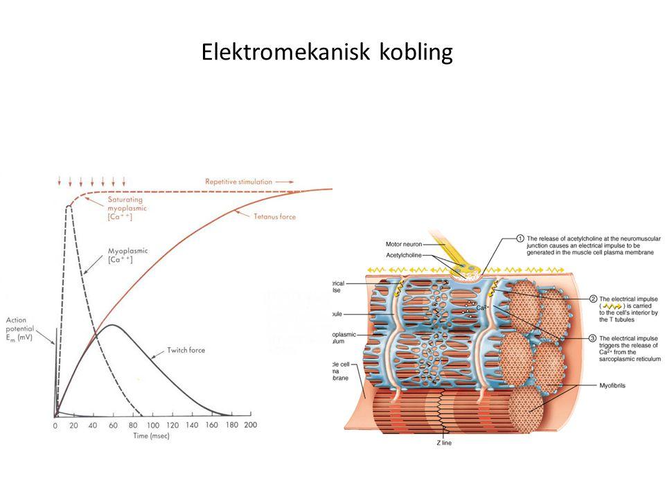 Elektromekanisk kobling