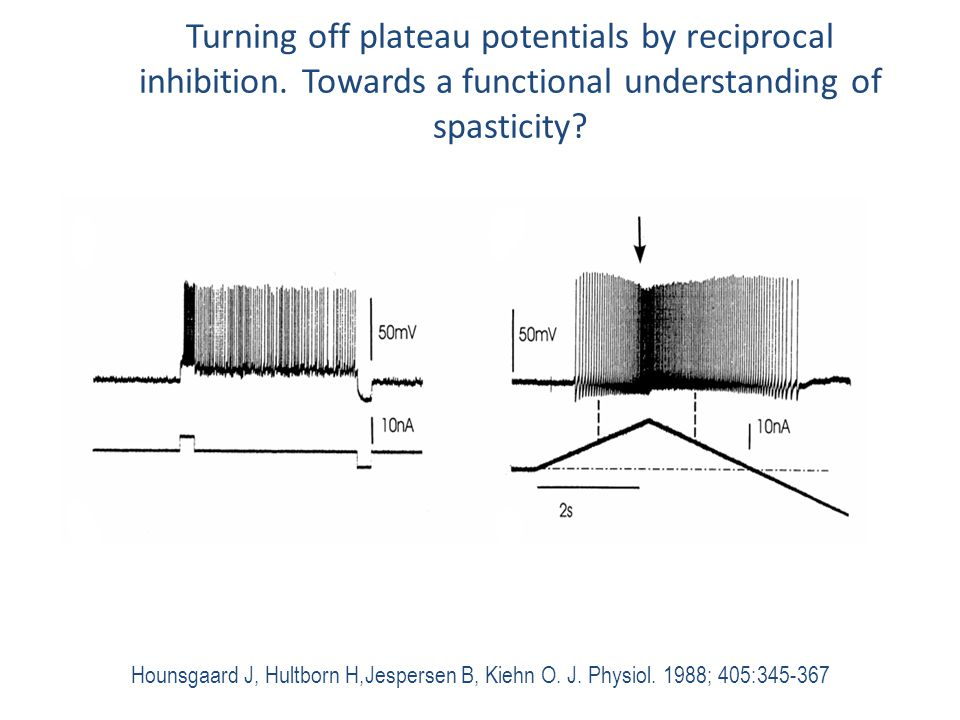 Turning off plateau potentials by reciprocal inhibition