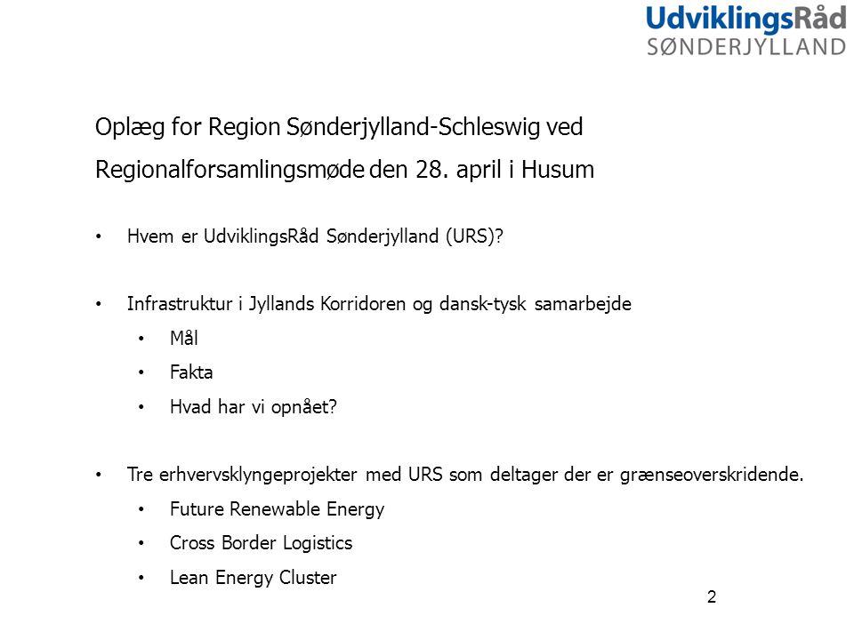 Oplæg for Region Sønderjylland-Schleswig ved