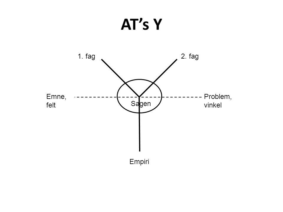 AT's Y 1. fag 2. fag Emne, felt Problem, vinkel Sagen Empiri