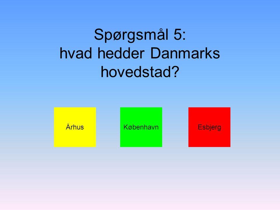 Spørgsmål 5: hvad hedder Danmarks hovedstad