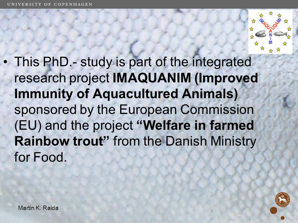 This PhD.- study is part of the integrated research project IMAQUANIM (Improved Immunity of Aquacultured Animals) sponsored by the European Commission (EU) and the project Welfare in farmed Rainbow trout from the Danish Ministry for Food.