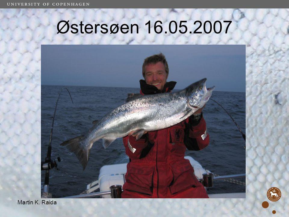 Østersøen 16.05.2007 Martin K. Raida