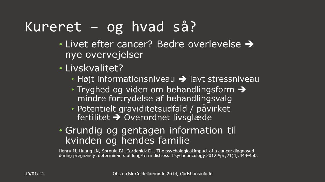Obstetrisk Guidelinemøde 2014, Christiansminde