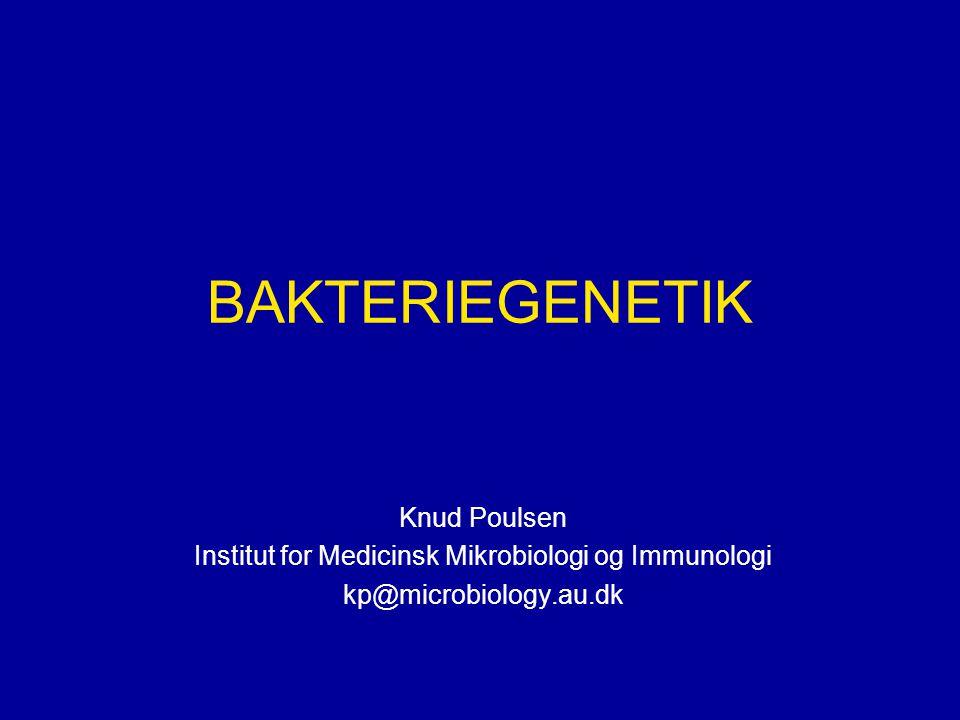 Institut for Medicinsk Mikrobiologi og Immunologi