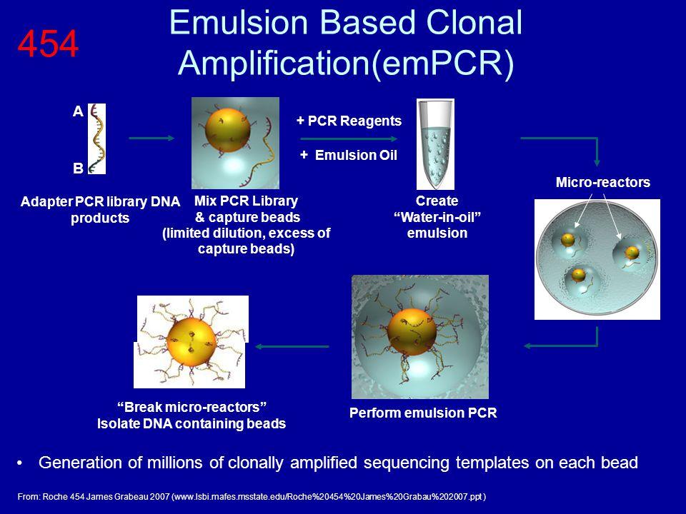 Emulsion Based Clonal Amplification(emPCR)