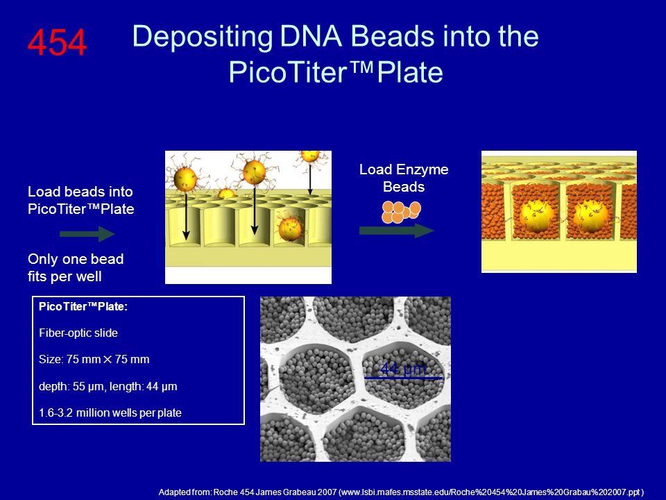 Depositing DNA Beads into the PicoTiter™Plate