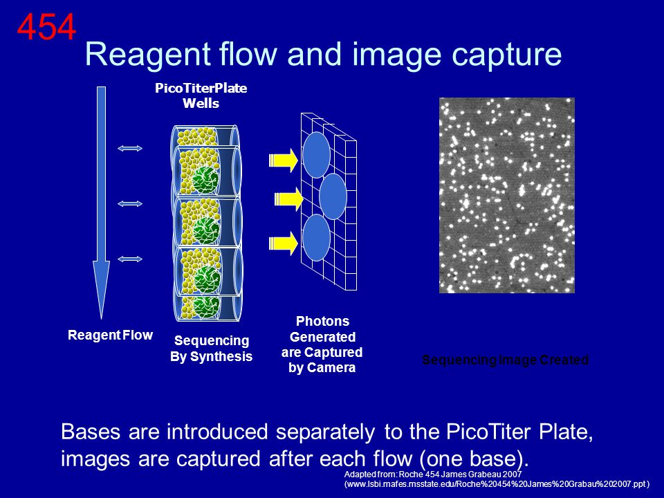 Reagent flow and image capture