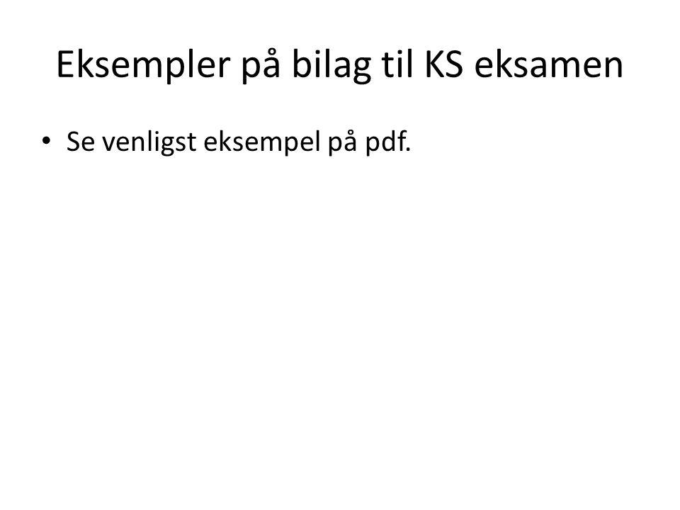 Eksempler på bilag til KS eksamen