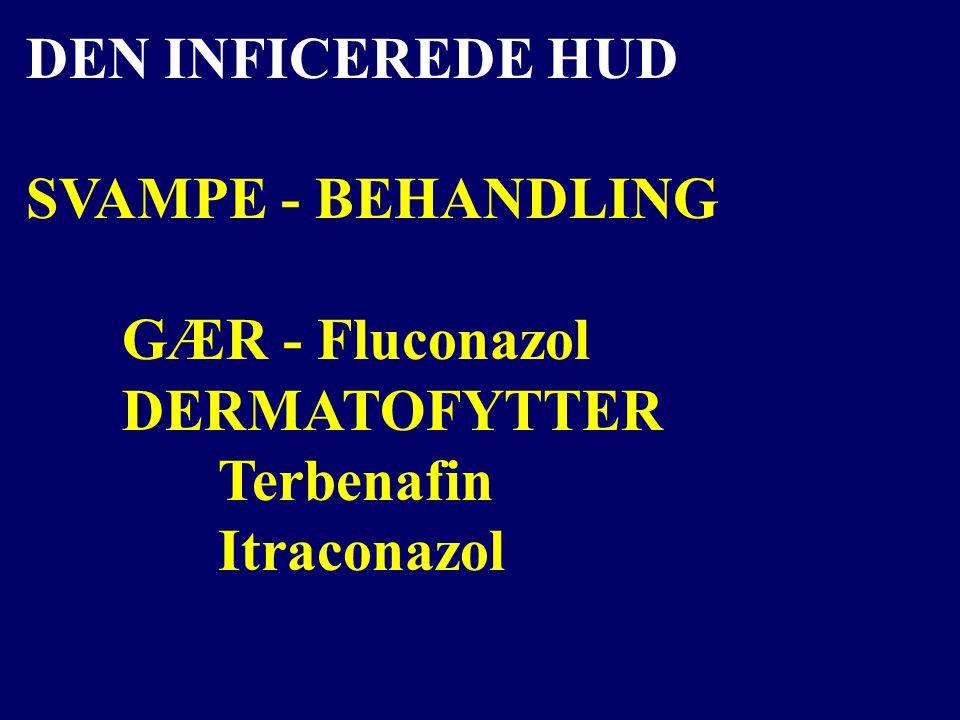 DEN INFICEREDE HUD SVAMPE - BEHANDLING GÆR - Fluconazol DERMATOFYTTER Terbenafin Itraconazol