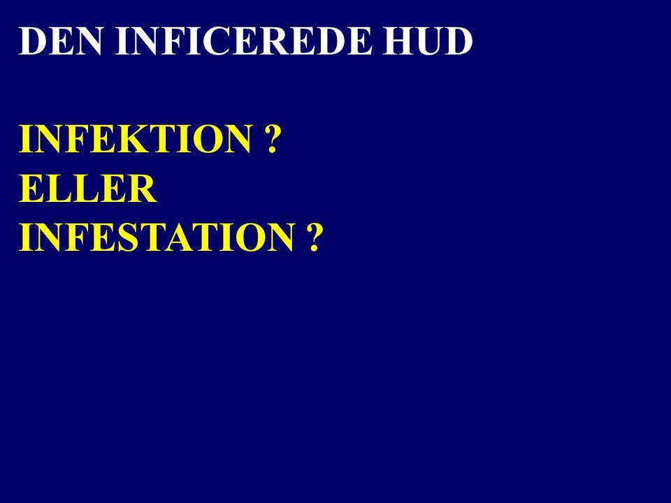 DEN INFICEREDE HUD INFEKTION ELLER INFESTATION