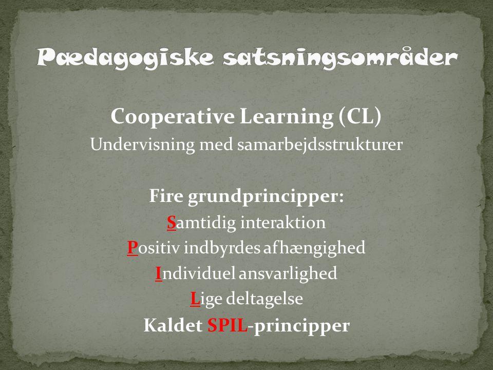 Pædagogiske satsningsområder