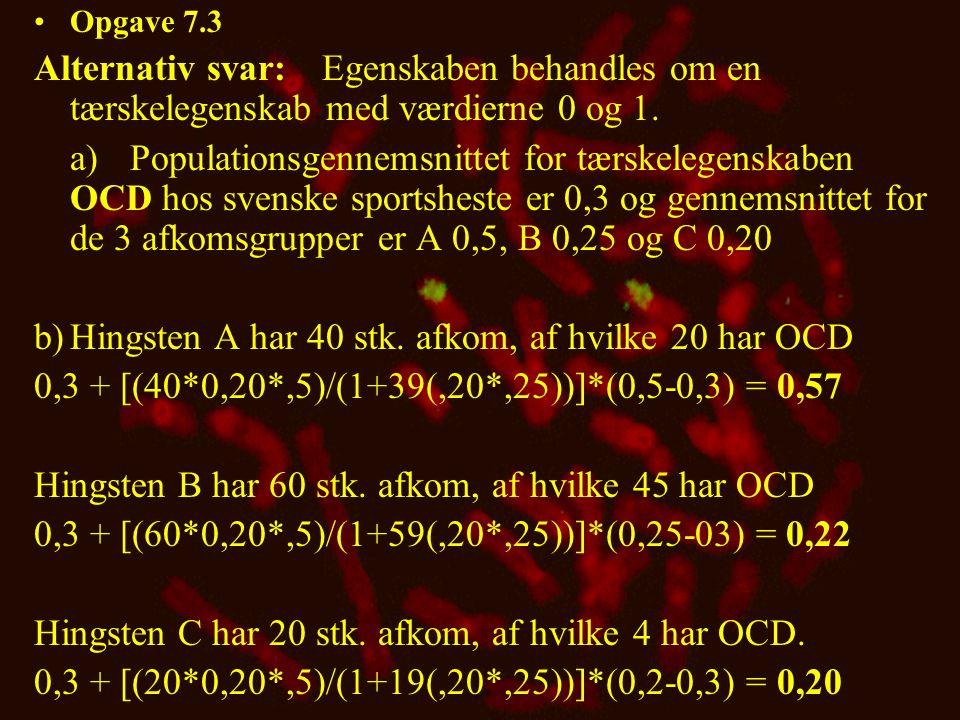 b) Hingsten A har 40 stk. afkom, af hvilke 20 har OCD