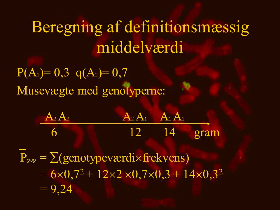 Beregning af definitionsmæssig middelværdi
