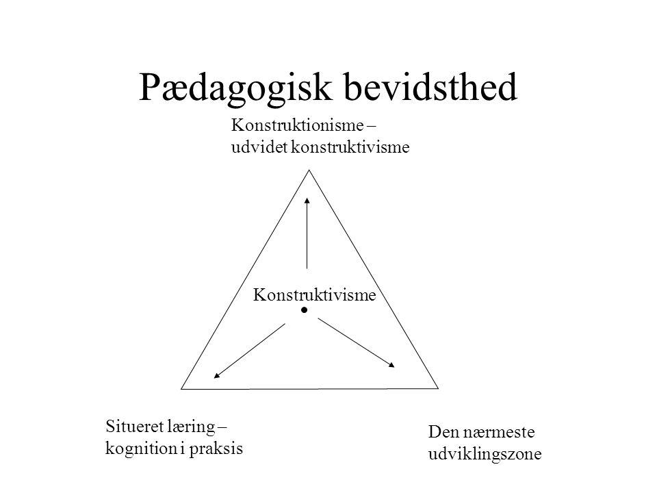 Pædagogisk bevidsthed