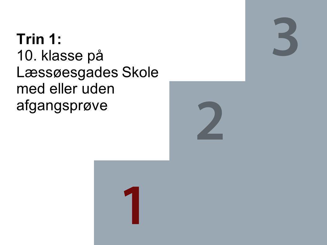 Trin 1: 10. klasse på Læssøesgades Skole med eller uden afgangsprøve