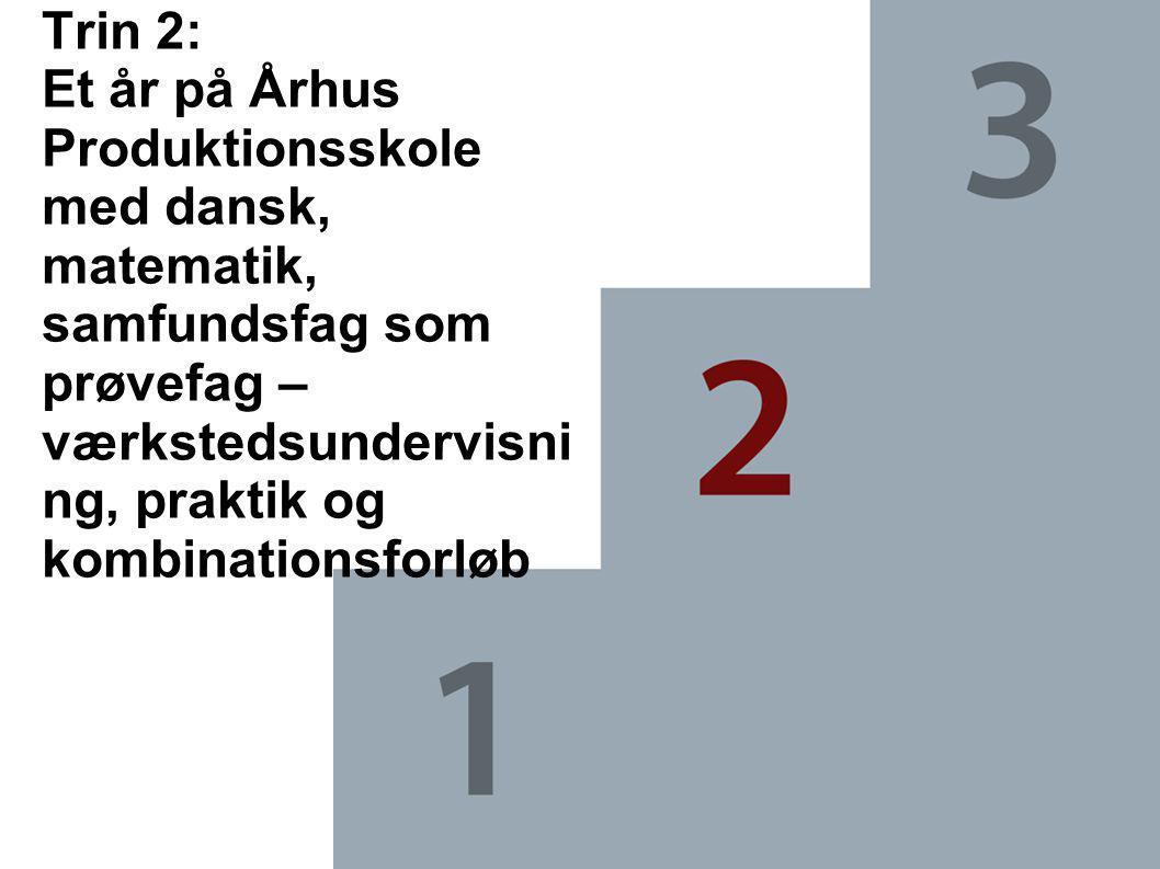 Trin 2: Et år på Århus Produktionsskole med dansk, matematik, samfundsfag som prøvefag – værkstedsundervisning, praktik og kombinationsforløb
