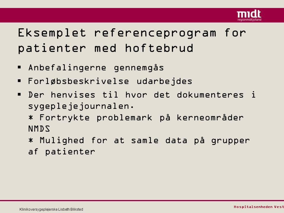 Eksemplet referenceprogram for patienter med hoftebrud