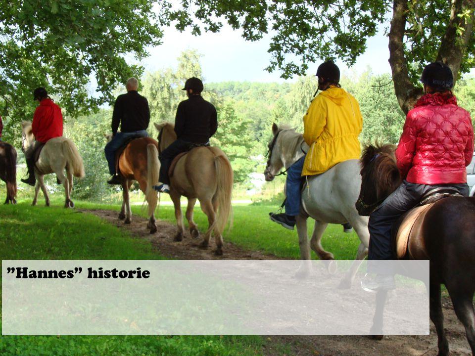 Hannes historie