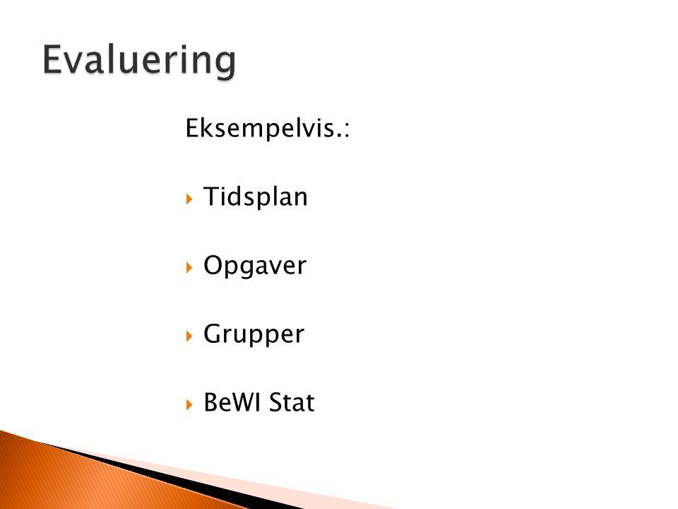 Evaluering Eksempelvis.: Tidsplan Opgaver Grupper BeWI Stat