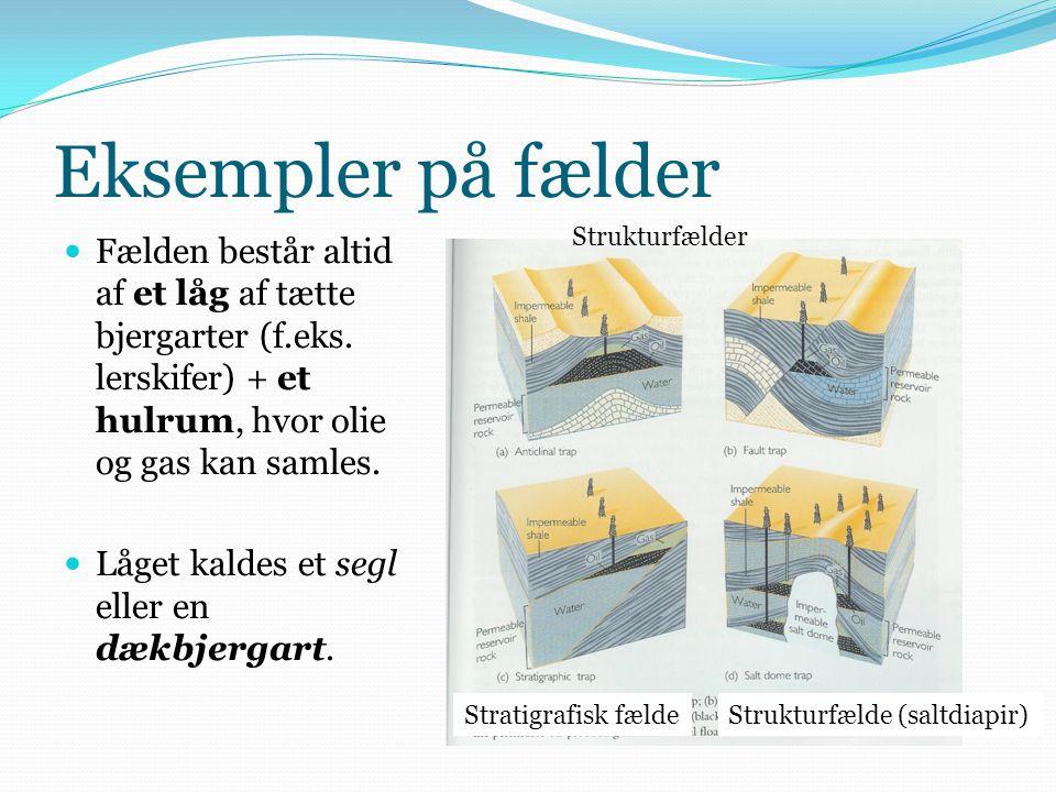 Eksempler på fælder Strukturfælder. Fælden består altid af et låg af tætte bjergarter (f.eks. lerskifer) + et hulrum, hvor olie og gas kan samles.