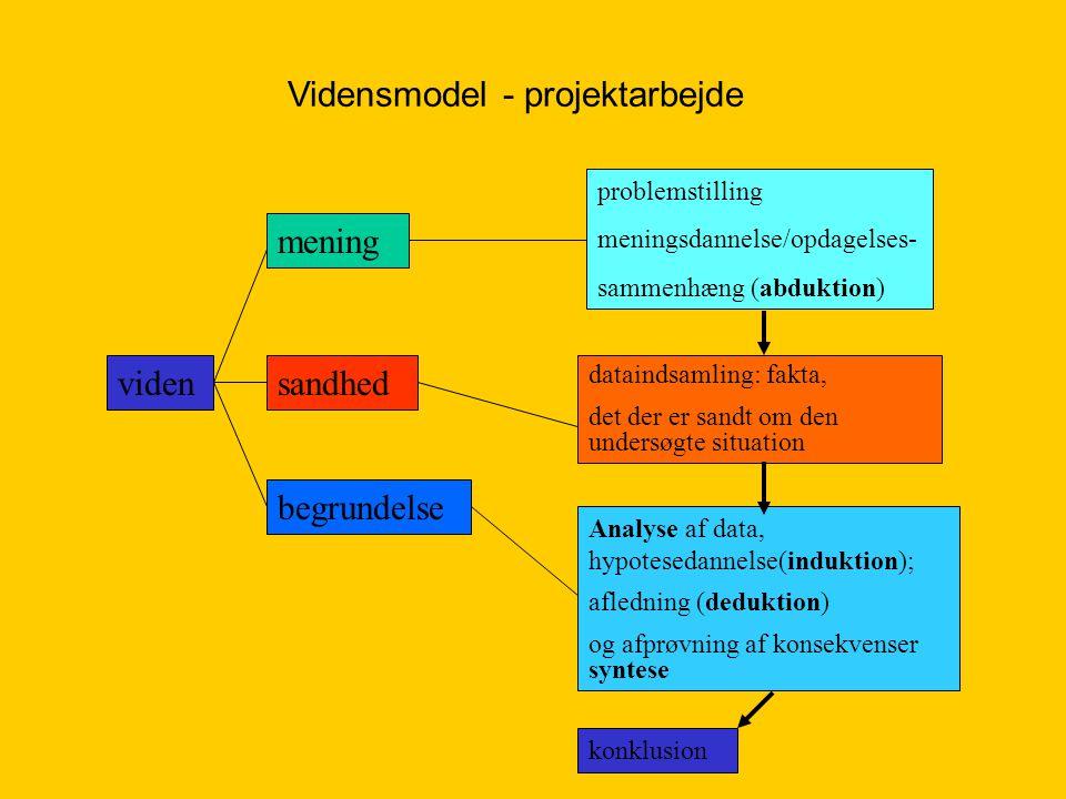Vidensmodel - projektarbejde