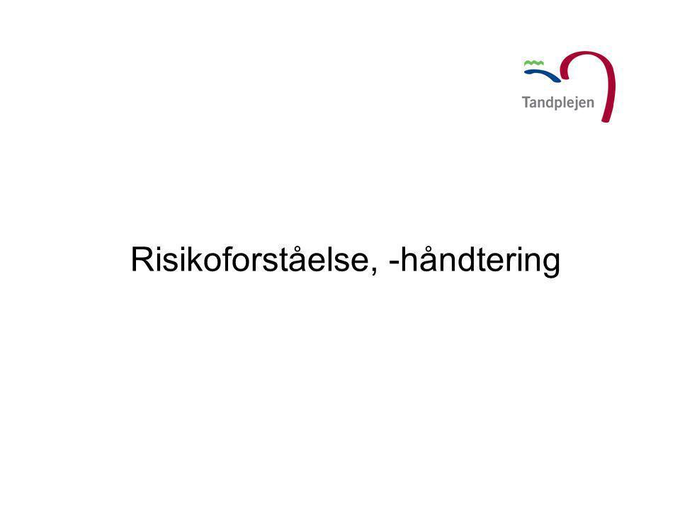 Risikoforståelse, -håndtering