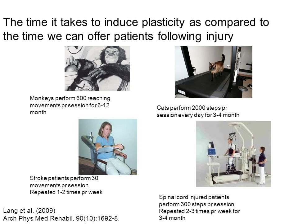 The time it takes to induce plasticity as compared to the time we can offer patients following injury