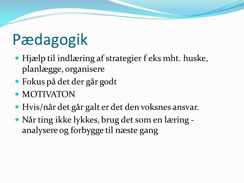 Pædagogik Hjælp til indlæring af strategier f eks mht. huske, planlægge, organisere. Fokus på det der går godt.
