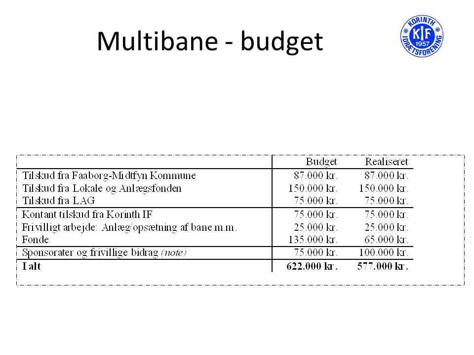 Multibane - budget