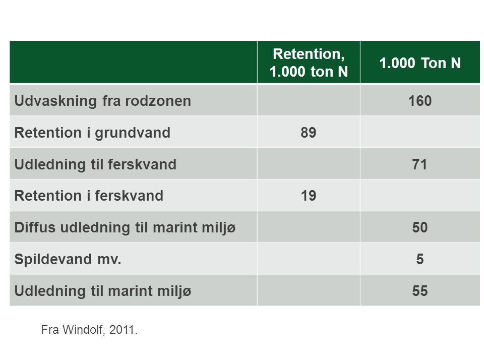 Udvaskning fra rodzonen 160 Retention i grundvand 89