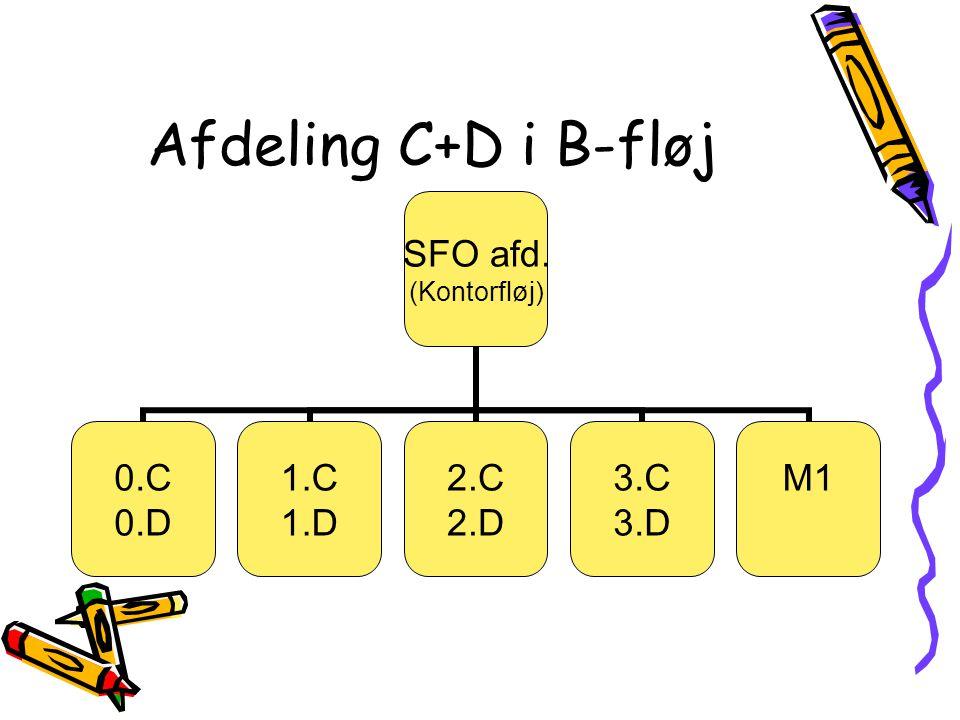 Afdeling C+D i B-fløj