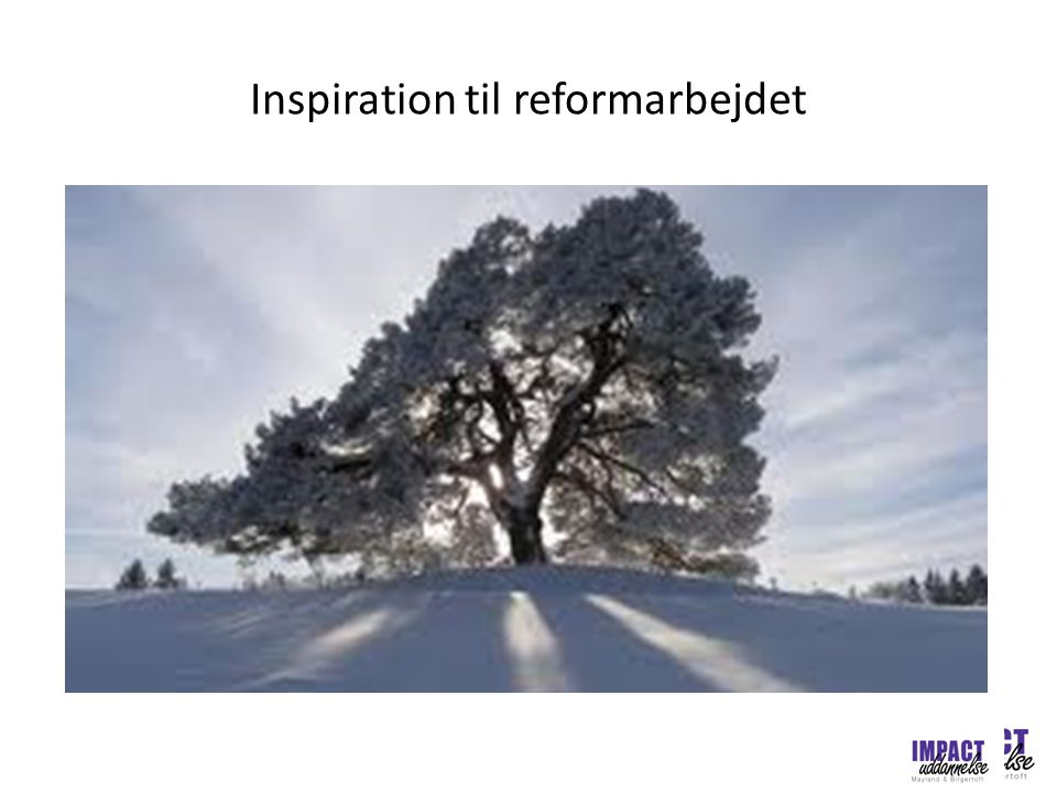Inspiration til reformarbejdet