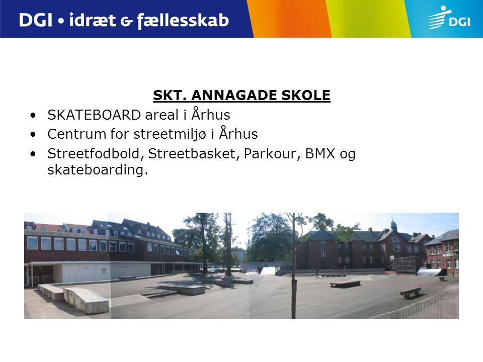 SKT. ANNAGADE SKOLE SKATEBOARD areal i Århus. Centrum for streetmiljø i Århus.