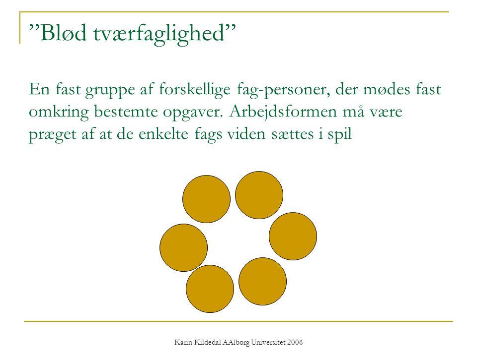 Karin Kildedal AAlborg Universitet 2006