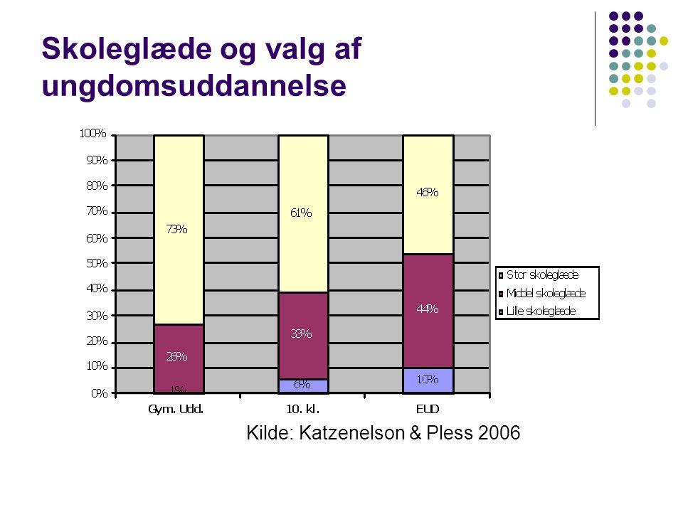 Skoleglæde og valg af ungdomsuddannelse