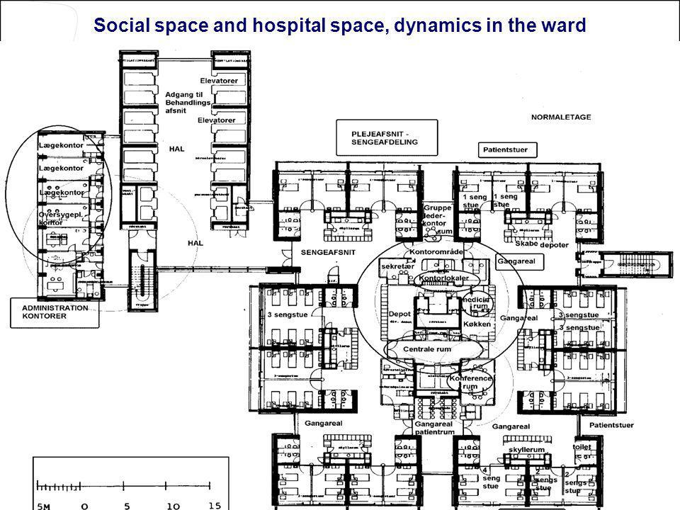 Social space and hospital space, dynamics in the ward