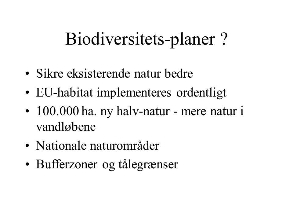 Biodiversitets-planer