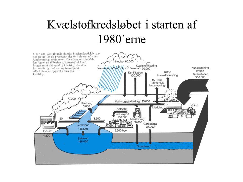 Kvælstofkredsløbet i starten af 1980´erne