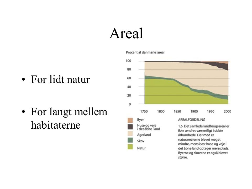 Areal For lidt natur For langt mellem habitaterne