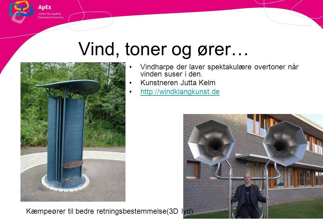 Vind, toner og ører… Vindharpe der laver spektakulære overtoner når vinden suser i den. Kunstneren Jutta Kelm.