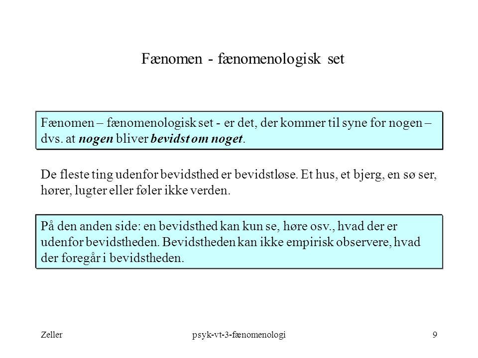 Fænomen - fænomenologisk set
