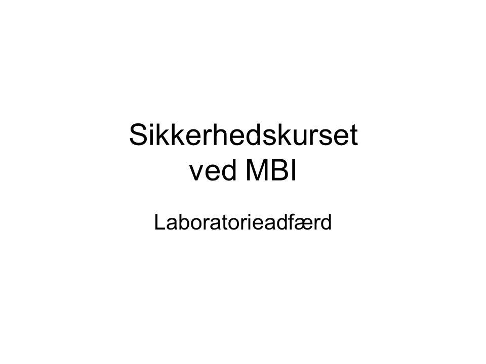 Sikkerhedskurset ved MBI