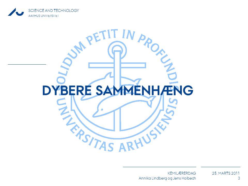 DYBERE SAMMENHÆNG