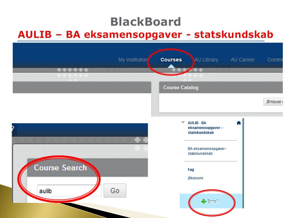 BlackBoard AULIB – BA eksamensopgaver - statskundskab