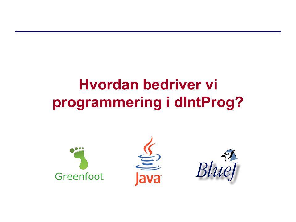 Hvordan bedriver vi programmering i dIntProg